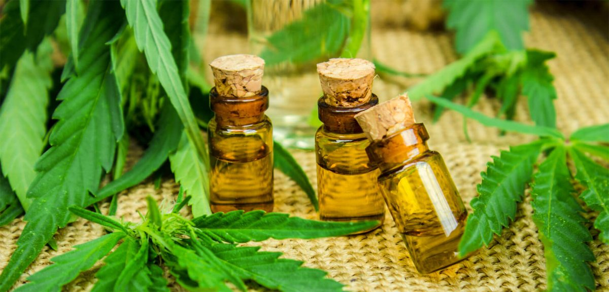 Cannabis als Therapie