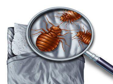 Betten von dauerhaft Bettlägrigen hygienisch sauber halten