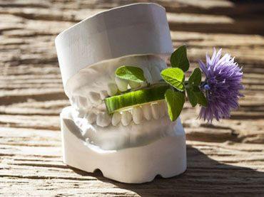 Warum durch Zahnprothesen der Geschmackssinn beeinträchtigt werden kann