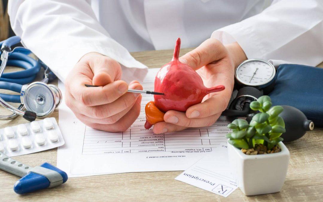 Inkontinenz: Formen – Anlegetechniken – Das richtige Produkt